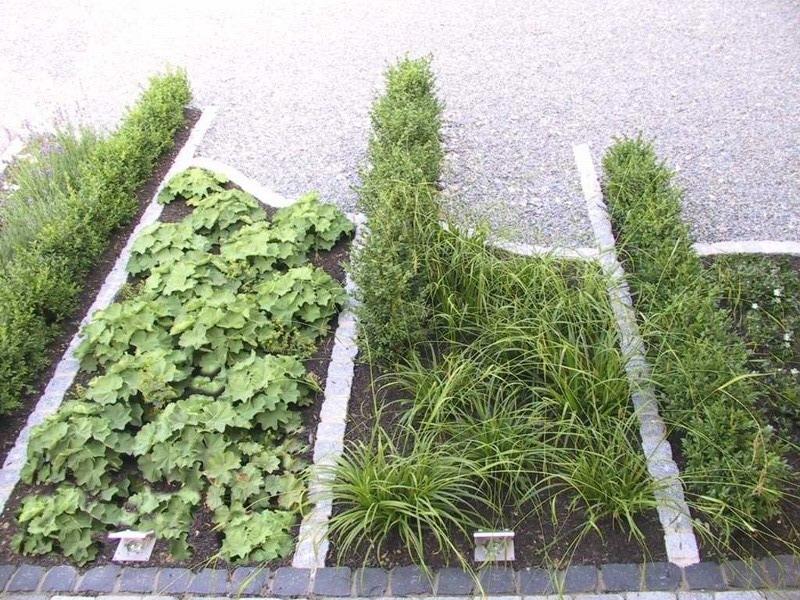 <strong>Pflanzbeet</strong> &ndash; planwerk GEHLE Fernplaner Fernplanung Landschaftsarchitektur Thomas Gehle Christine Gehle