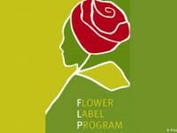 FLP-Programm