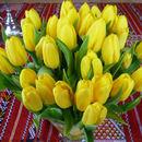 Strauß gelbe Tulpen