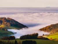 Kosmos Schwarzwald trifft mitten ins Herz
