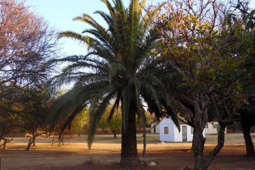 Neuigkeiten aus Mosambik