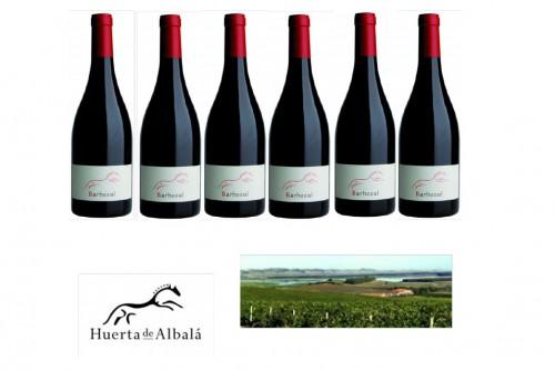 Huerta de Albalá - Barbazul - Weltklasse Rotweine aus Spaniens Süden