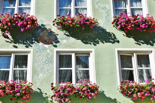 Wann muss man eine Fensterdichtung austauschen?