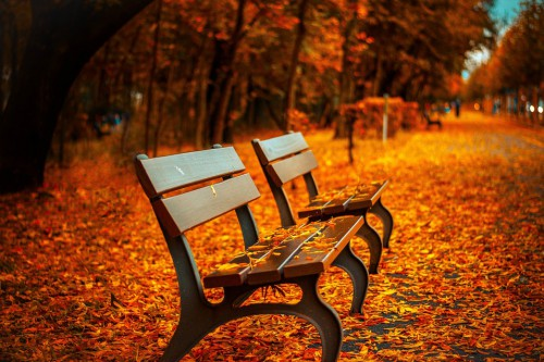 Unsere Urlaubspauschalen für den Herbst