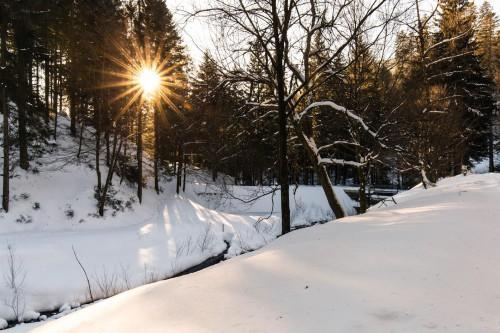 Winter-Wander-Wellness
