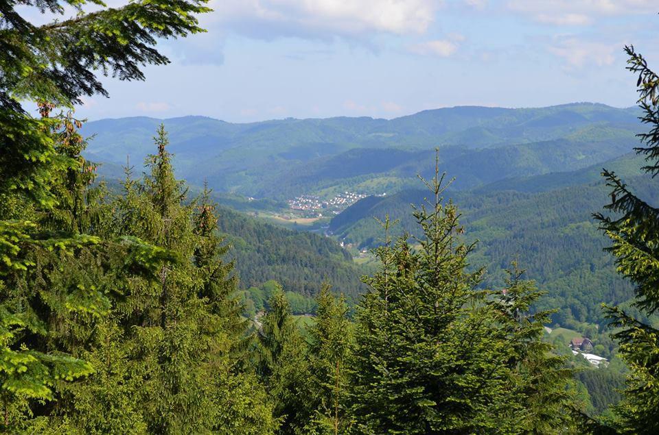 Schwarzwaldverein Bad Peterstal-Griesbach e.V.