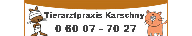 Banner Karschny