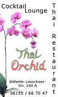 Thai Orchid
